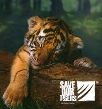 Save our Tigers and spread the message